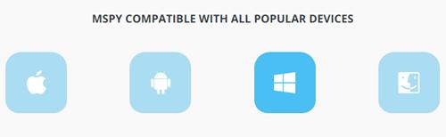 mspy compatible